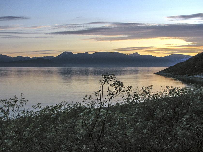 Norway 20080730_3752