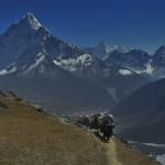 Solu Khumbu 20071025___6966