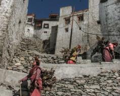 Zanskar-(Padum-Karsha)-20070127___7581